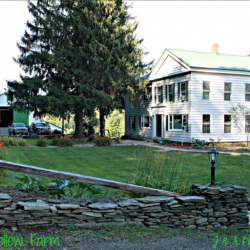 Froggy Hollow Farm Bed & Breakfast